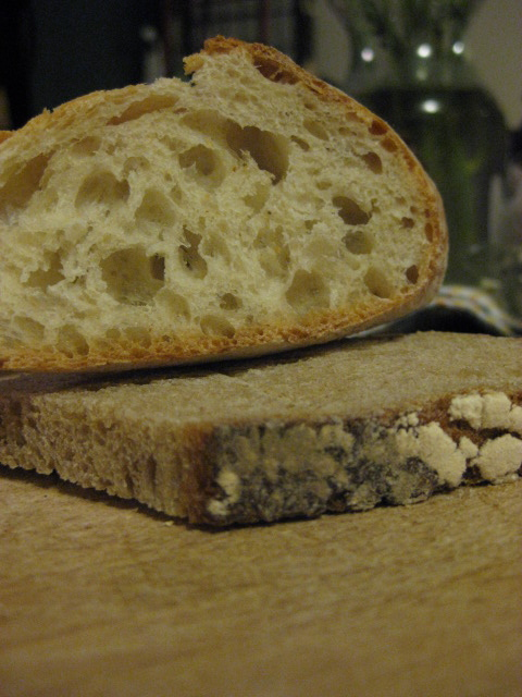 "hunk of French bread, slice of ""organic wheat"" bread"