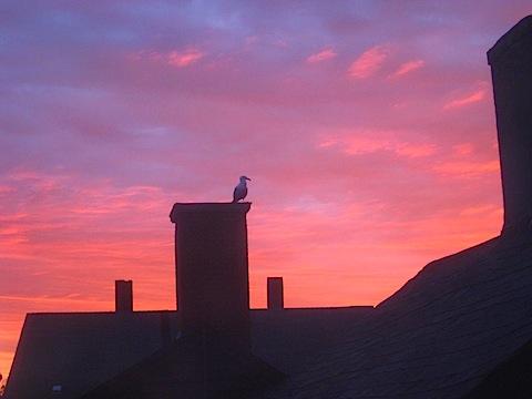 Good morning, Gloucester!